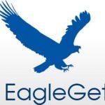 EagleGet Dosya indirici