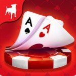 Zynga Poker Oyna