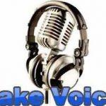 Fake Voice Ses Değiştirici