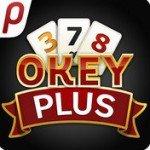 Okey Plus Oyna